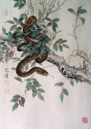 生肖属蛇各月性格