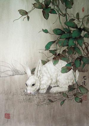 生肖属兔年运势