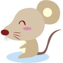 生肖属鼠生日运势