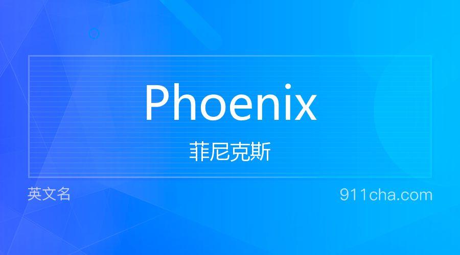 Phoenix 菲尼克斯
