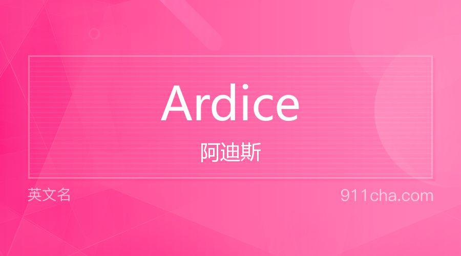 Ardice 阿迪斯