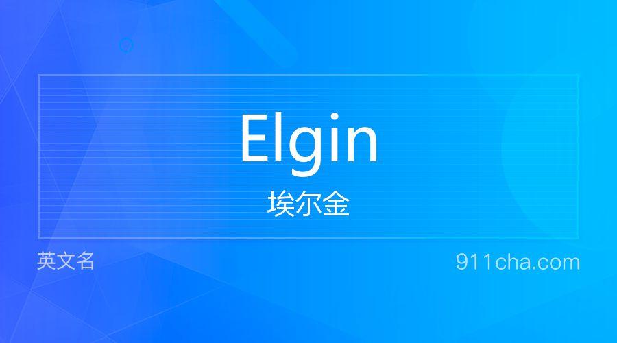 Elgin 埃尔金