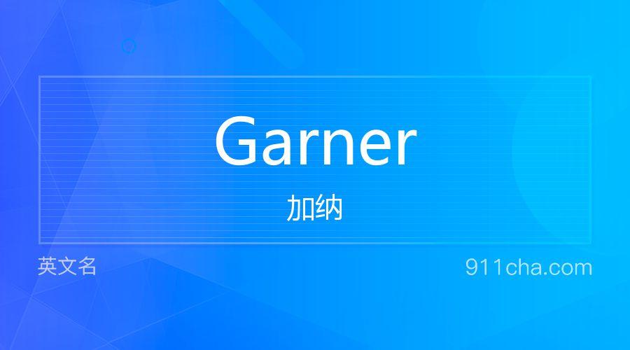 Garner 加纳